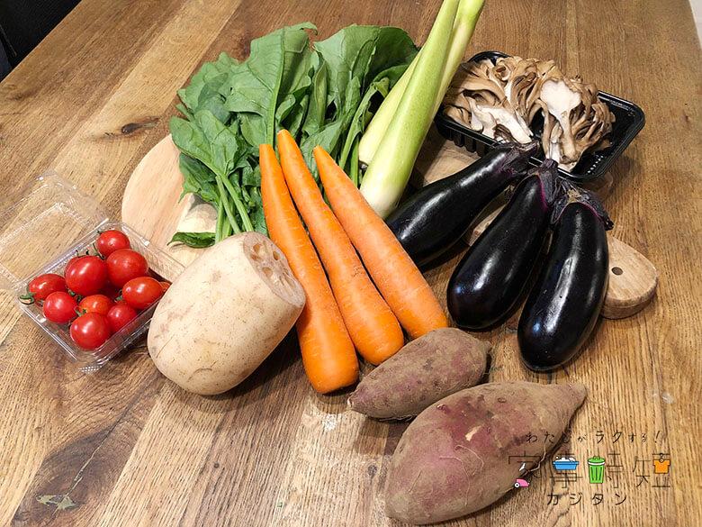 らでぃっしゅぼーや野菜全体画像