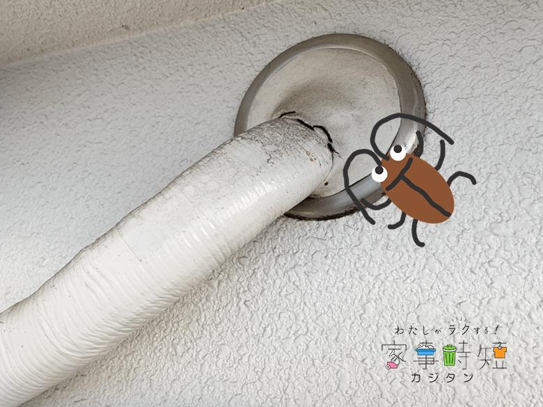 配管用穴にゴキブリ