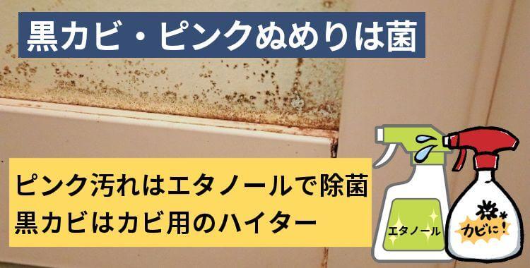 黒カビ・ピンクぬめりは菌
