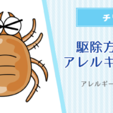 アレルギー画像あり※チリダニ(ヒョウダニ)の駆除方法とアレルギー対策