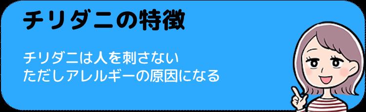 チリダニ(ヒョウヒダニ)の特徴