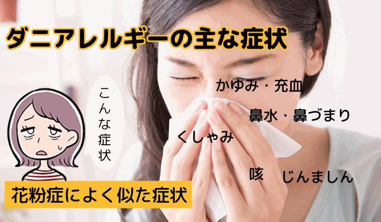 ダニアレルギーの主な症状