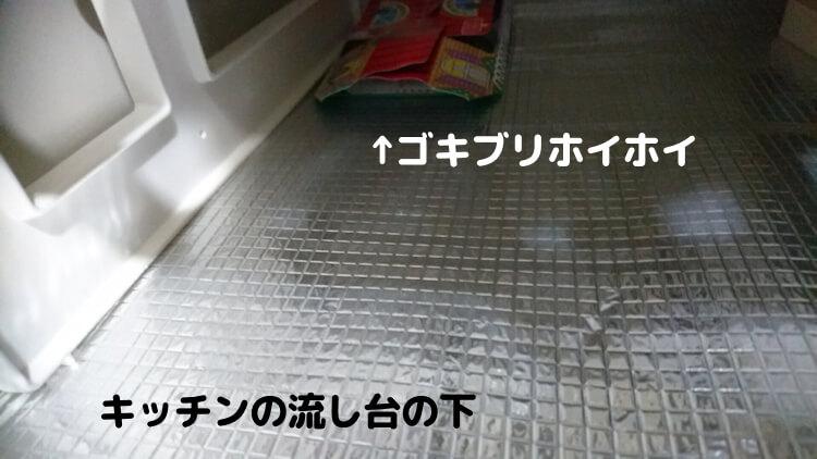 キッチンの流しの下