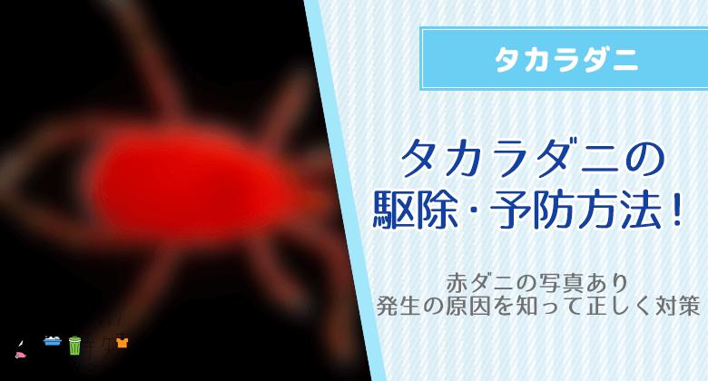 (赤ダニの写真あり)タカラダニの駆除・予防方法!発生の原因を知って正しく対策
