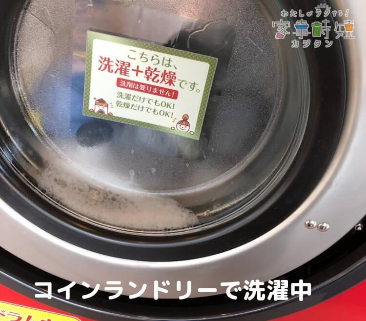 コインランドリーでぬいぐるみを洗濯