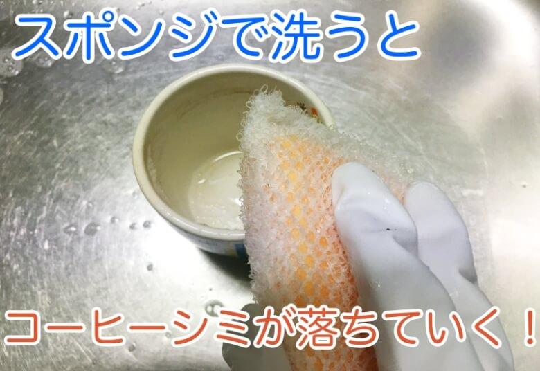 スポンジで洗う