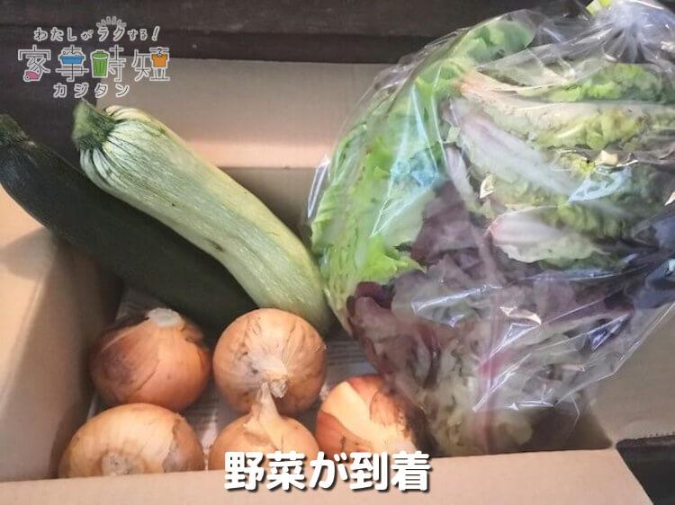 野菜が到着