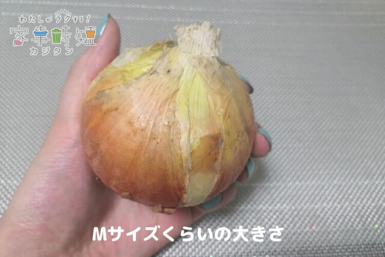 玉ねぎはMサイズくらい