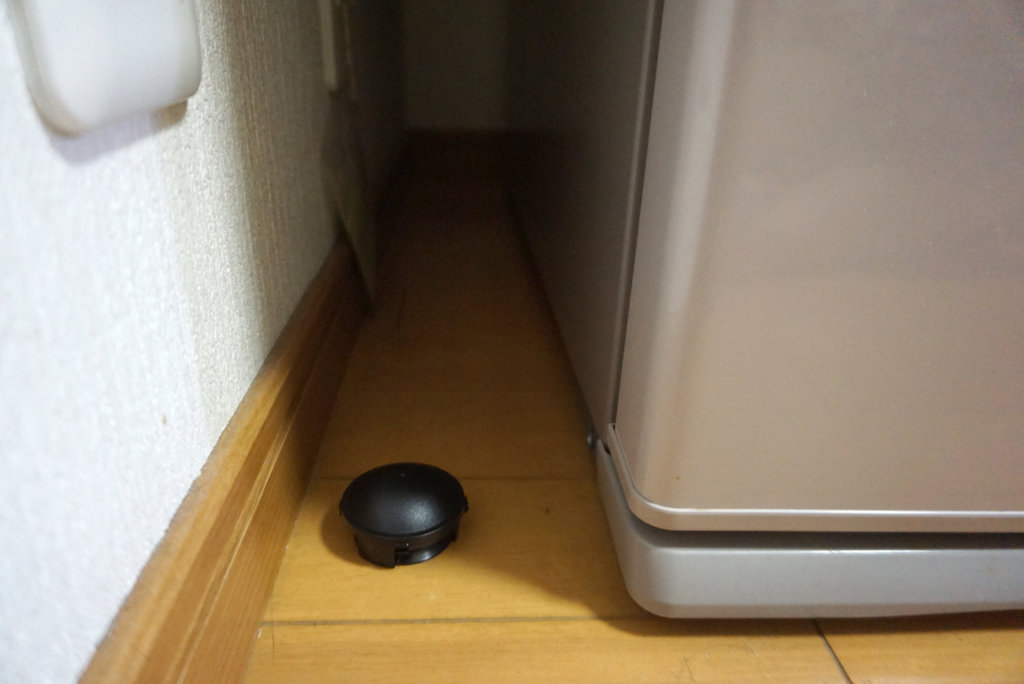 ブラックキャップ:冷蔵庫横