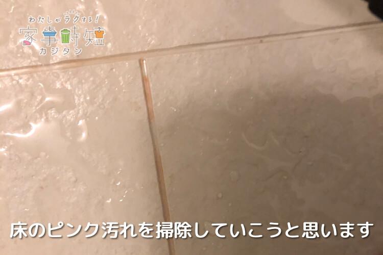 掃除前の床